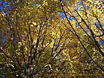 Oktober :: 100_9516